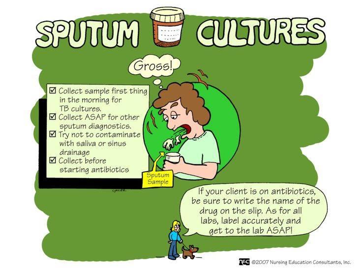 nursing mnemonics  sputum cultures