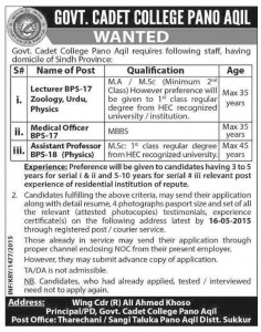 Assistant Professor & Lecturer Jobs in Govt. Cadet College Pano Aqil