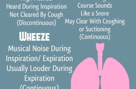 Nursing Mnemonics Lung Sounds – Wheezing, Crackling, Ronchi, and More