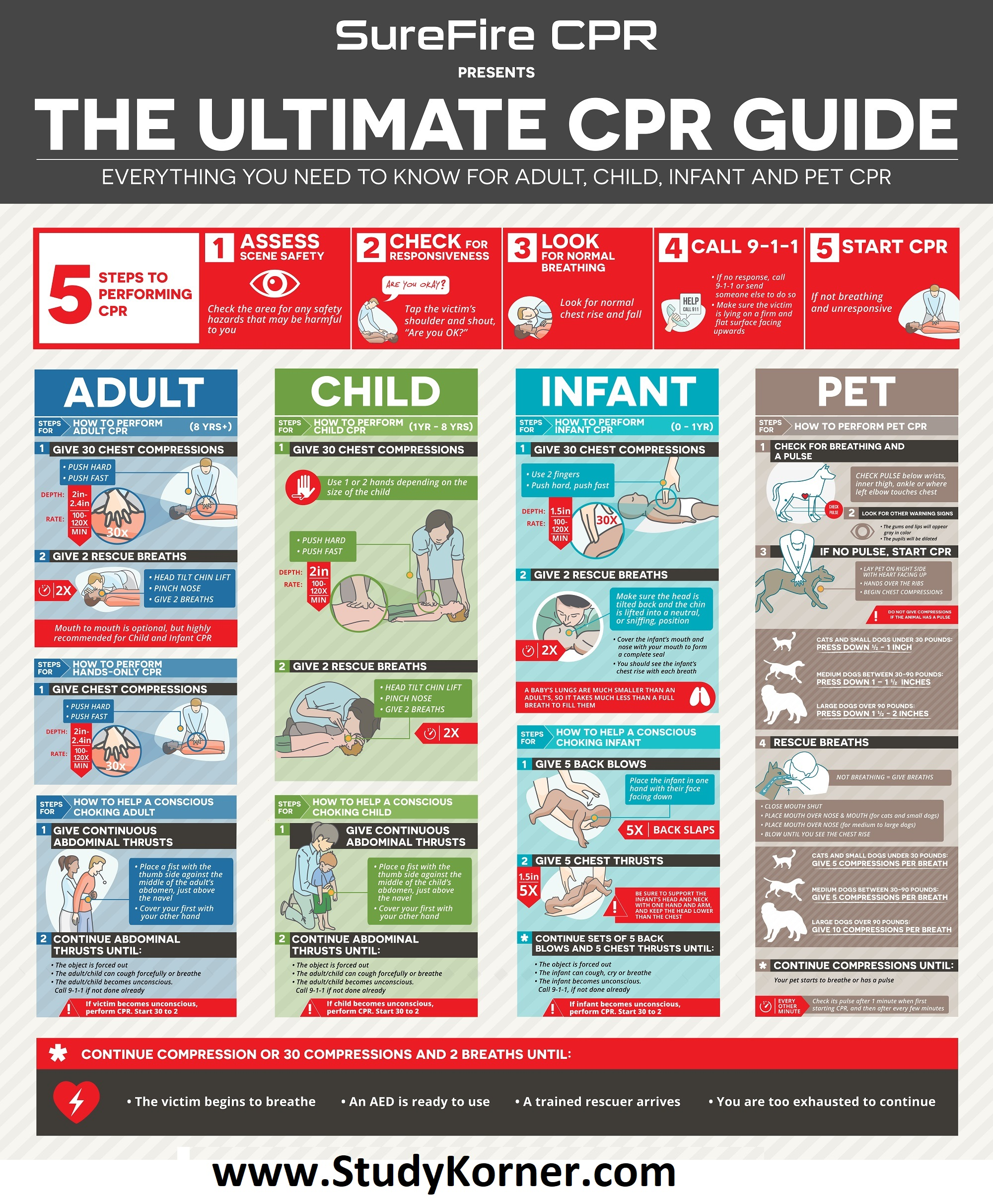 The Ultimate CPR Cheat Sheet/Guide For Adult Child Infant & Pet