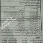 Lady Health Visitor Course Admission Open in DG Nursing Punjab 2019