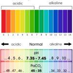 Arterial Blood Gas (ABG) Interpretation Made Easy Chart