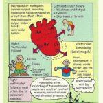 Nursing Left Sided Heart Failure
